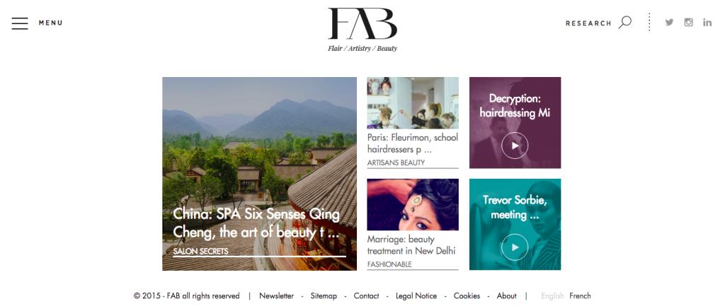 بازاریابی لوازم آرایشی برند لورئال : وبسایت FAB