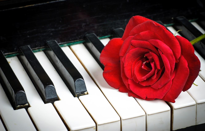 روز جهانی پیانو